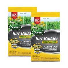 Cottage Farms Direct 0.5 qt. Elijah Blue Fescue Grass (3-Piece)-HD1007 - The Home Depot Fescue Grass, Blue Fescue, Turf Builder, Water Sprinkler, Lawn Fertilizer, Grass Type, Green Lawn, Ornamental Grasses, Fast Growing