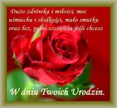 Kartka pod tytułem Najpiękniejsze Życzenia na Twoje Urodziny Flowers, Birthday, Pictures, Royal Icing Flowers, Flower, Florals, Floral, Blossoms