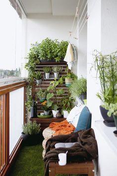 Vous pouvez profiter d'un mur végétal même si vous avez un petit balcon étroit qui semble difficile à aménager !