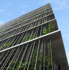 JCCU rain chain façade with Hemp plants, Japan by Seo inc. and Jun Hashimoto