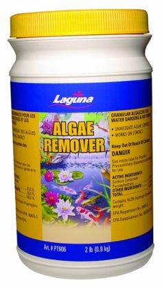 For the pond on pinterest ponds easy tricks and cleaning for Fish tank algae remover