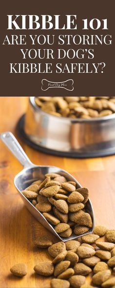Kibble 101: Are You Storing Your Dog's Kibble Safely? | Dog Food Storage | Dog Health Tips, Dog Health Care, Health Advice, Dog Treat Recipes, Dog Food Recipes, Diet Recipes, Healthy Tips, Healthy Recipes, Dog Food Storage