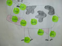 label parts of a cow, great for a farm unit - the blog it came from integrates the process of getting milk from cows to kids