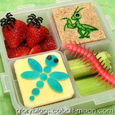 Kids Bug Bento Lunch For School