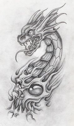 dragon with skull 2 by markfellows on DeviantArt
