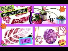 DIY ✄ DECORA TU ESPACIO CON CASCARAS DE HUEVO - MOSAICO - VARIAS IDEAS△ Litta´s World - YouTube