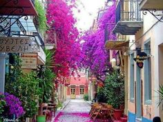 Bougainvillea Street, Nafplio, Greece still one of my favourite places i've been Places Around The World, The Places Youll Go, Places To See, Around The Worlds, Wonderful Places, Beautiful Places, Romantic Places, Beautiful Flowers, Greece Travel