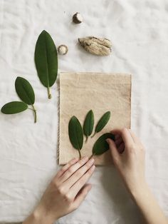 How to print with plants onto fabric — kaliko Hand Printed Fabric, Printing On Fabric, Fabric Painting, Diy Painting, Natural Dye Fabric, Textile Dyeing, Linoleum Block Printing, Fabric Stamping, Diy Canvas Art