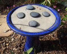 Make your own butterfly puddler by filling a small bowl, dish or flower pot bottom with sand. Add water until the sand is soggy. Make sure the bowl is at least 16 wide or you will be adding water to it often as it evaporates. Small Backyard Gardens, Outdoor Gardens, Butterfly Feeder, Butterfly Plants, Diy Butterfly, Butterfly House, Monarch Butterfly, Mushroom Compost, Hummingbird Garden