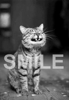 Smile - Life is too short!