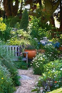I'd like to do this along the back fence, a secret garden...
