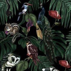 Helen Z B Wilson is the artist and designer behind Witch and Watchman's unique, intricate and striking wallpaper. Gothic Wallpaper, Diy Wallpaper, Wallpaper Paste, Wallpaper Samples, Designer Wallpaper, Beautiful Wallpaper, Dark Witch, Goth Home