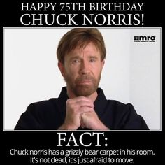 Chuck Norris Thesis Statement?