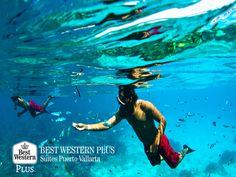 EL MEJOR HOTEL DE PUERTO VALLARTA. Kayak, snorkeling y buceo, son deportes acuáticos que podrá practicar en las azules y tranquilas aguas de Bahía de Banderas. Experimente en sus próximas vacaciones, toda la adrenalina que el hermoso Puerto Vallarta guarda para usted. En Best Western Plus Suites Puerto Vallarta, le ofrecemos la mejor hospitalidad para que tenga el mejor de sus viajes. #elmejorhotelenpuertovallarta