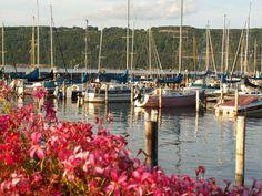 Sailboats in harbor, Watkins Glen, N.Y.