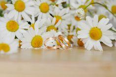 Классические обручальные кольца можно выбрать на gold-stream.ru #wedding #rings #цветы #ромашки #свадьба #обручальныекольца #кольца