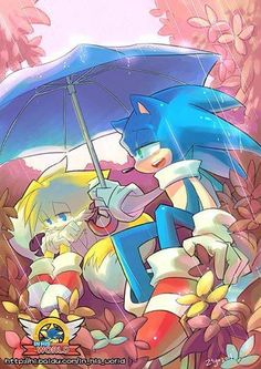 The feeling changes when you realize Sonic is biologically 7 years older than Tails. Sonic The Hedgehog, Hedgehog Movie, Silver The Hedgehog, Shadow The Hedgehog, Sonic 3, Sonic And Amy, Sonic And Shadow, Sonic Fan Art, Game Sonic