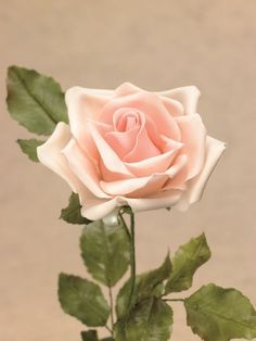 How to make this ultra realistic Rose in Sugar Paste - Tutorial