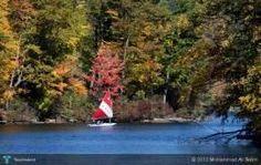 Sailing in Autumn #Creative #Art #Photography @touchtalent.com