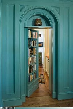 So awesome! Very Nancy Drew. Hidden door behind the bookcase, just like in Message in a Haunted Mansion!