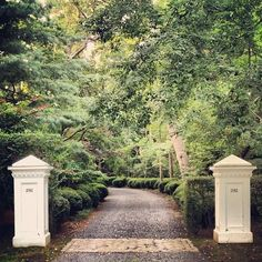 Driveways are entrances that are frequently over looked. They should be treated as any other foyer, doorway or gateway.
