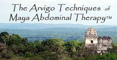 The Arvigo Techniques of Maya Abdominal Therapy for digestive health and fertility.  REALLY want to take this course to expand my preconception work.