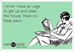 Ha. So me sometimes, except usually halfway through starting a huge cleaning endeavor