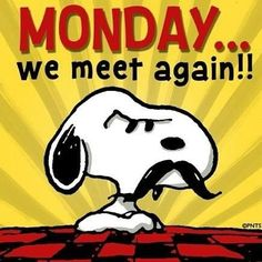 Monday...We meet again!!! funny day charlie brown snoopy peanuts monday days of the week lucy weekdays i hate mondays