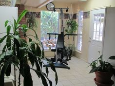 Exercise room - include plants