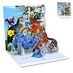 Cats & Flowers #GetWell Card [ http://www.thegoodlifestore.com/store/index.php?main_page=index&cPath=230#.U-FmsfldVUW ]