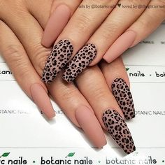 On average, the finger nails grow from 3 to millimeters per month. If it is difficult to change their growth rate, however, it is possible to cheat on their appearance and length through false nails. Ten Nails, Aycrlic Nails, Nail Swag, Gorgeous Nails, Pretty Nails, Nagel Bling, Leopard Print Nails, Cheetah Nail Designs, Peach Nails
