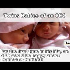 Twins babies of an SEO
