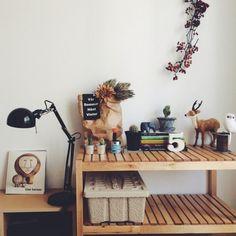サボテン/IKEA/Bedroomのインテリア実例 - 2014-12-10 20:33:30   RoomClip(ルームクリップ)