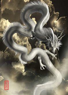 Dragon Rpg, Fantasy Dragon, Mythical Creatures Art, Fantasy Creatures, Dark Fantasy Art, Fantasy Artwork, Japanese Dragon, Chinese Dragon, Rukia Bleach