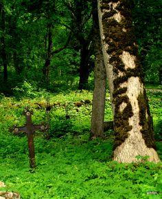 Old cemetery in Estonia #colourfulestonia #COLOURFULESTONIA  #VISITESTONIA