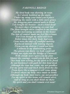 Pet Loss Sympathy and Poetry Cards Animal Quotes, Dog Quotes, Animal Poems, Dog Sayings, Qoutes, Pet Poems, Horse Poems, Poem About Death, Thoughts
