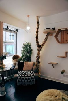 The 6 Sheffield Cafes You'll Never Want To Leave – UK – Sabine We – Cat playground outdoor Cat Wall Shelves, Cat House Diy, Diy Cat Tree, Cat Cafe, Cat Room, Pet Furniture, Cat Decor, Diy Stuffed Animals, Room Inspiration