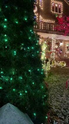 Christmas Tree Gif, Merry Christmas Pictures, Christmas Lights Outside, Christmas Scenery, Very Merry Christmas, Christmas Music, Christmas Wishes, Christmas Holidays, Christmas Crafts