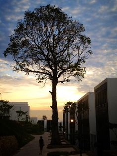 Indonesia - Montigo Resorts, Nongsa, Batam