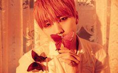 B1A4 Reveals Teaser Photos For The Members | Koogle TV
