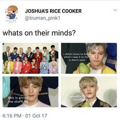 oh my gosh dino stob- Woozi, Wonwoo, Jeonghan, Diecisiete Memes, Funny Memes, Seventeen Memes, Pledis Entertainment, Seungkwan, Kpop Groups