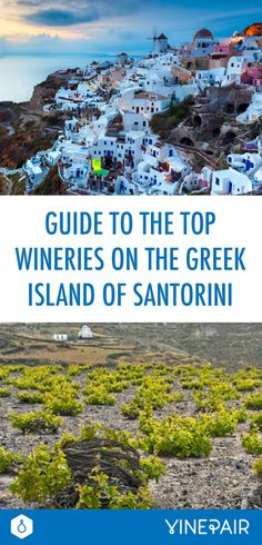 Guide to the Top Wineries on the Greek Island of Santorini