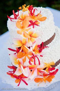 2 tier blue ombre wedding cake maui wedding cake at olowalu plantation house wwwmikesidneycom wedding cakes pinterest olowalu plantation house