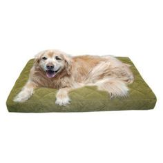 Carolina Pet Company Quilted Jamison Oops Pet Bed Sage - 01233
