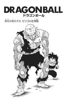 Piccolo and Gohan