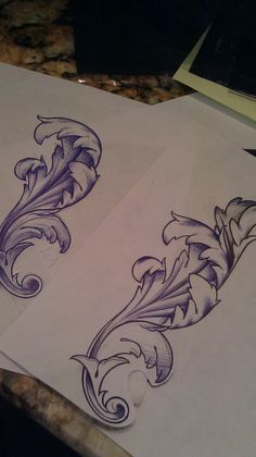 acanthus for drawing practice. Ready? Go!