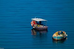 The resting seagull Boat, Gera, Dinghy, Boats, Ship