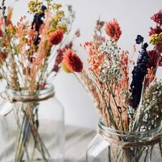 Most Beautiful Flowers, Pretty Flowers, College Walls, Dinning Room Tables, Dry Plants, My New Room, Dried Flowers, Flower Power, Planting Flowers