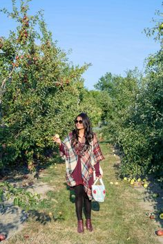 love_playing_dressup_jc_penney_apple_picking-plaid_scarf_blanketscarf_petite