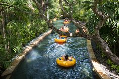 10 Things To Do With Kids In Bali